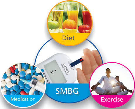 Creating a Comprehensive EcoSystem for Diabetes Management