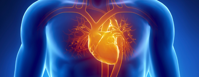 Coronary Artery Disease:  Women Suffer from it too
